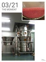 高效制粒干燥機