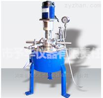 实验室常用小型高压反应釜