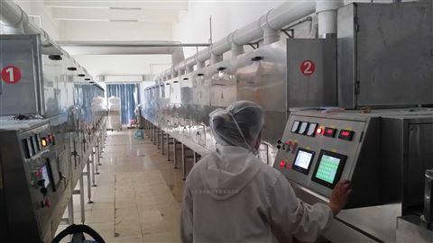 茴香香辛料微波干燥灭菌设备