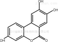 尿石素C标准品