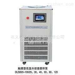 DLSB-40/30低温循环泵