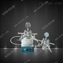 加氢用微型高压反应釜带磁力搅拌水热合成反应釜