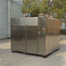 CT-C-II电加热热风循环烘箱