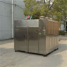 CT-C-II热风循环烘干箱