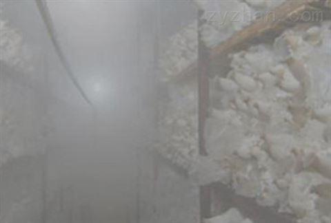 超声波食用菌加湿器厂家