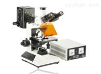 SGO-YG1熒光顯微鏡