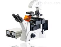 SGO-YG2倒置荧光显微镜