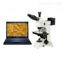 CMY-310Z摄像型三目正置金相显微镜