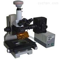 ACCUR1000显微镜电动样品台