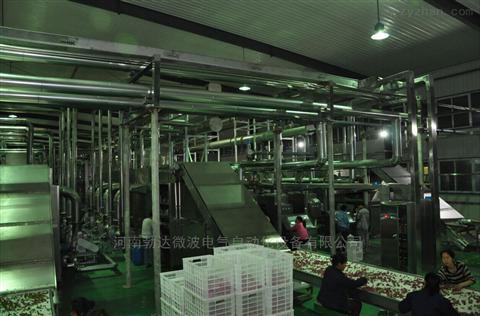 微波杀菌机厂家直销食品机械