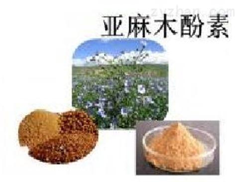 亚麻籽提取物 20  40  亚麻木酚素
