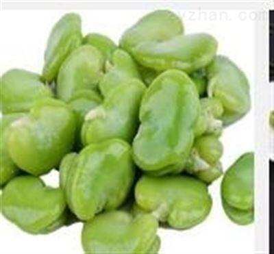 果蔬粉 蚕豆蛋白 蚕豆粉  沃特莱斯长期供应