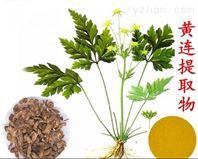 黄连提取物 10:1 比例提取 黄连多肽