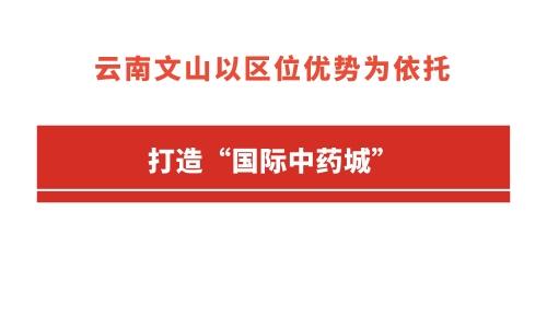 """云南文山以区位优势为依托 打造""""国际中药城"""""""