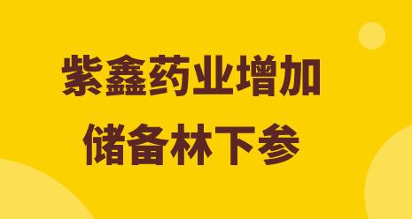 紫鑫药业增加储备林下参