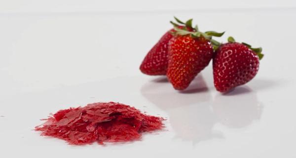 草莓冷冻干燥